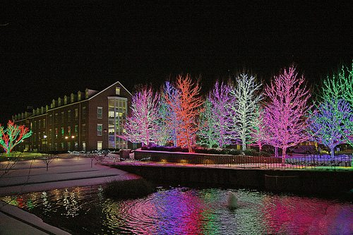 chesapeake christmas lights