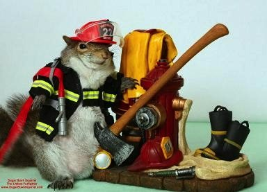 squirrel firefighter