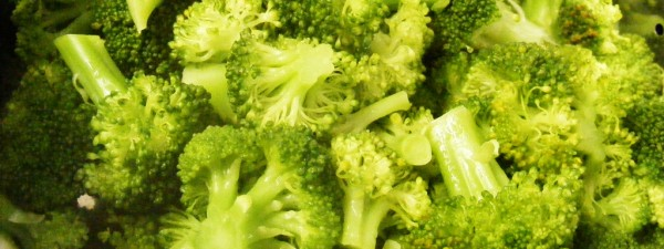 Steamed_Broccoli-2