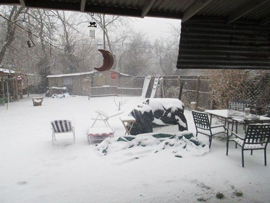 winter weather backyard 4