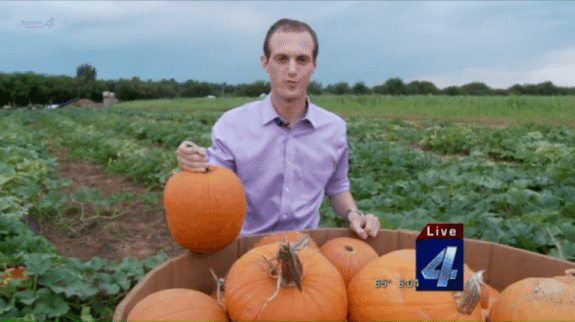 pumpkin shortage