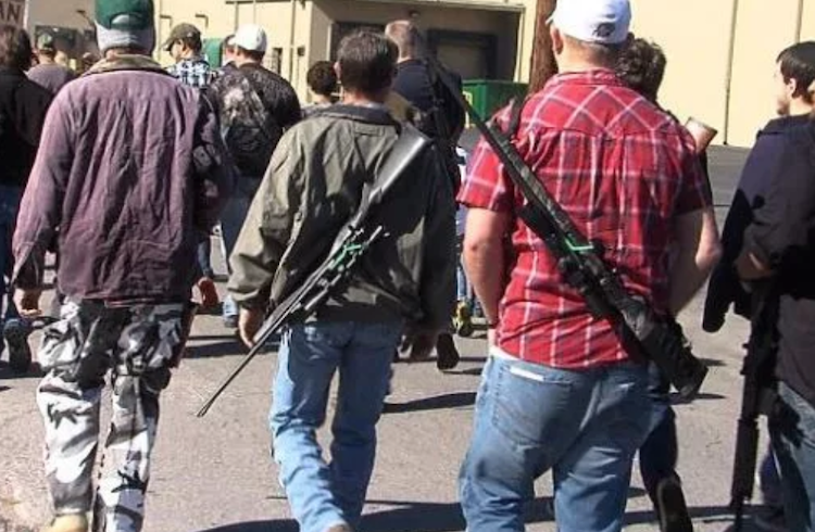5 Reasons Why You Shouldn't Sign The Open Carry Recall Petition…